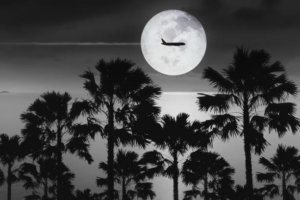 Full Moon In Aquarius – Precisely That Simple, Also That Difficult