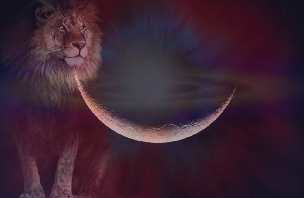 New Moon in Leo – Lessons learned… Now what?